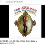 cocker-Bird-On-A-Wire