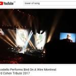 tos-youtube-elviscostello-bird